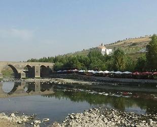 Barajdan gelen su kesildi, Dicle Nehri'nde binlerce balık telef oldu