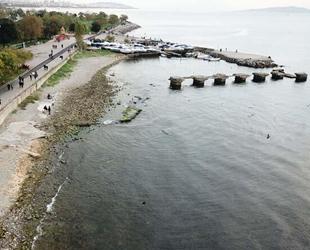 Kadıköy'de deniz çekildi, tedirginlik yaşandı