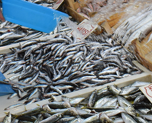 Marmara Denizi'ndeki fırtına balık fiyatlarını arttırdı