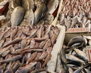 Mersin'de havaların iyi gitmesinden dolayı balığa zam gelmedi