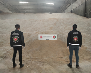 İskenderun Limanı'nda GDO'lu 5 bin ton pirinç ele geçirildi