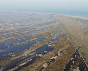 Kızılırmak Deltası'nda deniz suyu tehlikesi ortaya çıktı