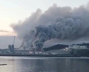 İrlanda'nın Cork Limanı'nda yangın çıktı