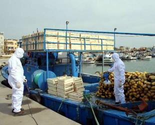 Karaduvar Balıkçı Barınağı'ndaki tekneler dezenfekte edildi