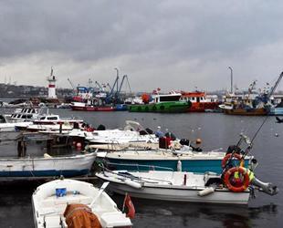 Marmara'da deniz salyası arttı, balıkçılar avlanmaya çıkamıyor