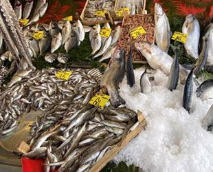 Sakarya ve Zonguldak'ta soğuk hava balık fiyatlarını artırdı