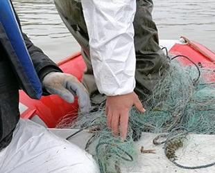 Kaçak olarak avlanan 750 kilogram canlı balık suya bırakıldı