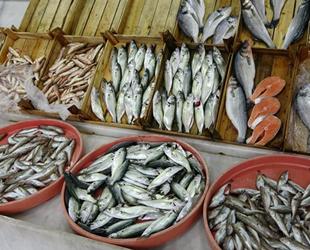 Tekirdağ'da balıkçılar avlanamayınca tezgahtaki balığın fiyatı arttı