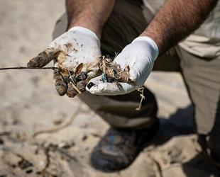 İsrail, petrol sızıntısı sonrası deniz ürünlerinin satışını yasakladı