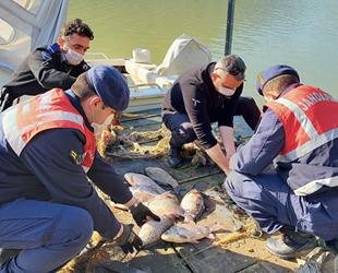 İzmir'de kaçak balık avcılarına geçit yok