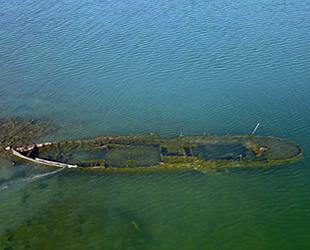 Van Gölü'nde su seviyesi düşünce batık gemi ortaya çıktı