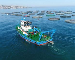 Trabzon'dan su ürünleri ihracatında son 5 yılda rekor artış yaşandı