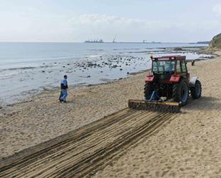 Yumurtalık, Gölovası ve Zeytinbeli sahilleri temizleniyor