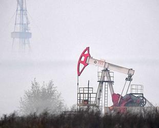 Küresel petrol üretimi Şubat ayında azaldı