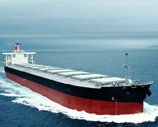 Deniz yoluyla taşınan yük yüzde 100 arttı