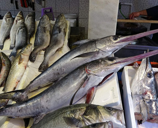 Karadeniz'de av azalınca Trabzon'a İzmir ve İstanbul'dan balık gitti