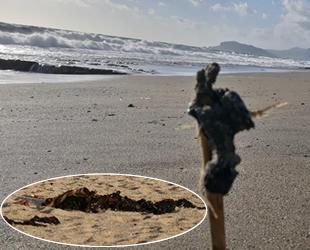 Alanya'da sahilde ayaklara yapışan zift şaşkına çevirdi