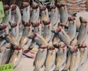Fırtına ve Moritanya balıkçılığı fiyatları yükseltti