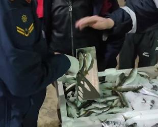 Tekirdağ'da balıklara asgari boy denetimi yapıldı
