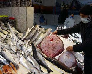 Kalkan ve deniz levreği fiyatıyla şaşırtıyor