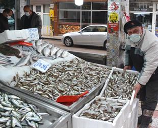 Sinoplu balıkçılar, bu sezon umduğunu bulamadı