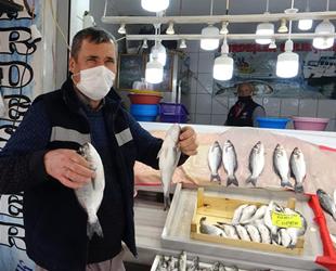 Marmaralı balıkçılar, sezondan memnun olmadıklarını açıkladılar
