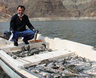 Ayvalı Barajı'nda balık üretimi başladı