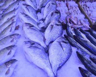 Tezgâhlarda balık çeşitleri çoğaldı, fiyatlar düştü