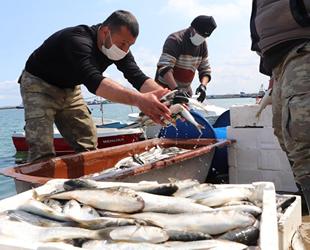 İklim değişikliği balıkçılığı da etkiledi