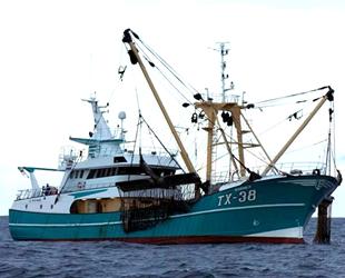 Elektrikle balıkçılık yasağına karşı açılan dava reddedildi