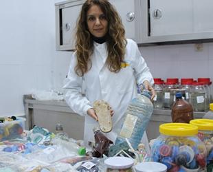 12 adet balık türünde mikroplastik görüldü