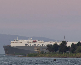 Hoegh Pusan isimli gemi, Tuzla'da karaya oturdu
