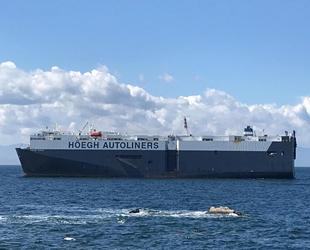 Tuzla'da karaya oturan gemiyi kurtarma çalışmaları sürüyor