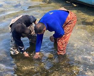 İznik Gölü'nde balıkçıların ağına tarihi eser takıldı