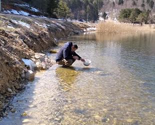 Göllere 620 bin adet alabalık yavrusu bırakıldı