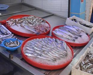 Sinop'ta balık satışları yüzde 80 düştü
