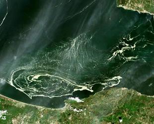 Marmara Denizi'ni saran deniz salyaları uydudan bile görüldü