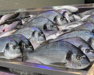 Avlanma yasağında kültür balıklarına talep arttı