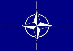 Hamsi balığına NATO desteği