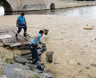 İBB ekipleri, deniz salyasını temizlemeye başladı
