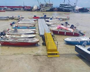 Balıkçıların kabusu 'deniz salyası' geri döndü