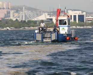 İzmit Körfezi'nde 150 ton deniz salyası toplandı