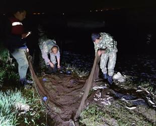 Van Gölü'nde kaçak avlanan 3.5 ton inci kefali ele geçirildi