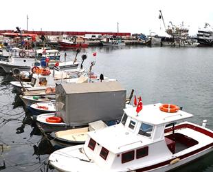 Küçük tekne balıkçıları, deniz salyasının bitmesini bekliyor