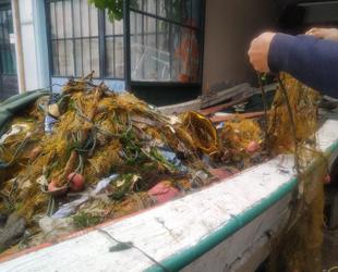 Kıyı balıkçıları, limana çöp dolu ağlarla dönüyorlar