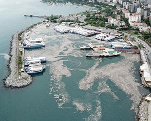 Deniz salyasına karşı 'Acil Eylem Planı' hazırlanıyor