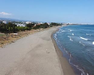 Doğu Akdeniz sahilleri anaç deniz kaplumbağaları için hazırlandı