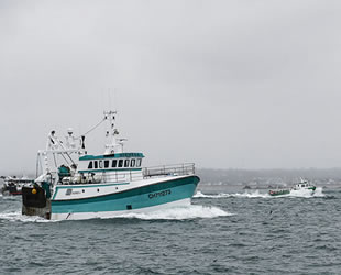 AB ve İngiltere, 2021 yılı için balıkçılık kotalarında anlaştı