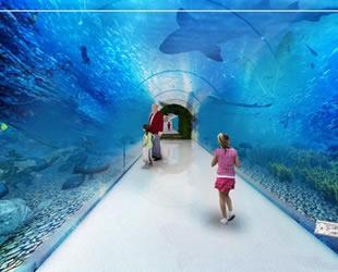 Okyanus canlıları, Tünel Akvaryum'da görücüye çıkacak