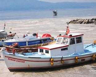Mustafa Altuğ Atalay: Müsilajın balık ve midyeye etkisi yok